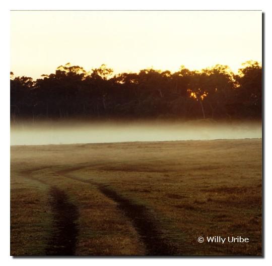 Rodadas en la cercanías del Cabo Leeuwin, Wes Australia.