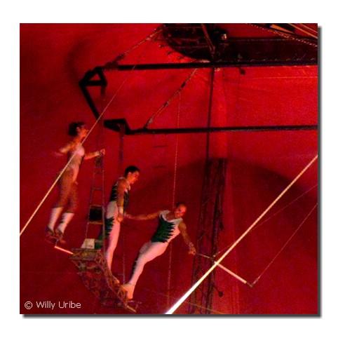 El celibato católico en el trapecio. Tengo Sitio Libre. Blog de Willy Uribe