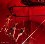 El celibato católico en el trapecio
