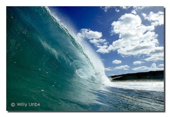 Boojidup. West Australia. WU PHOTO © Willy Uribe