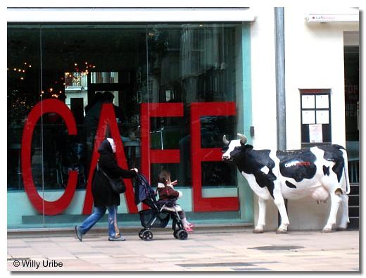 Café con leche. Vitoria-Gasteiz, Euskadi. WU PHOTO © Willy Uribe