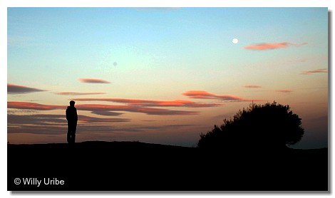 The moon. Uribe Kosta. Basque Country. WU PHOTO © Willy Uribe