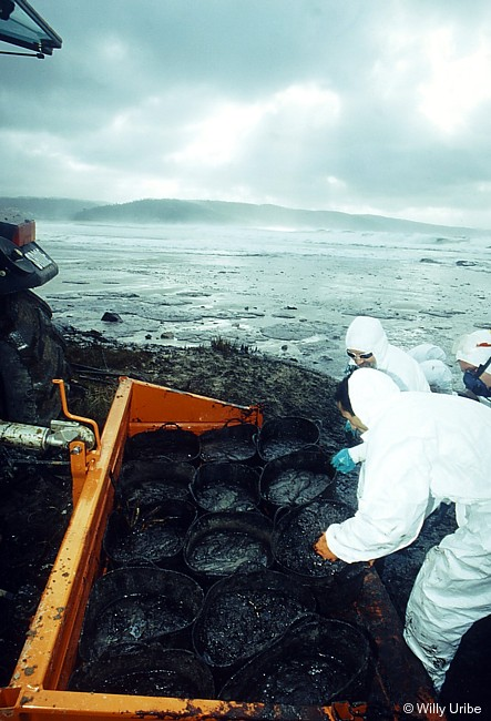 Marea negra del Prestige, 2002. Galicia. Spain. Foto © Willy Uribe