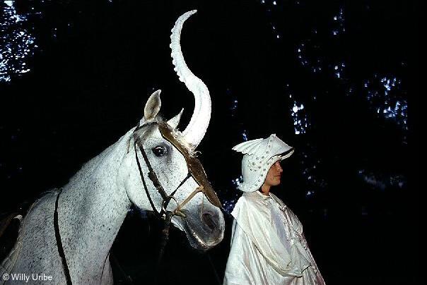 Unicornio. Bilbao. Basque Country. WU PHOTO © Willy Uribe