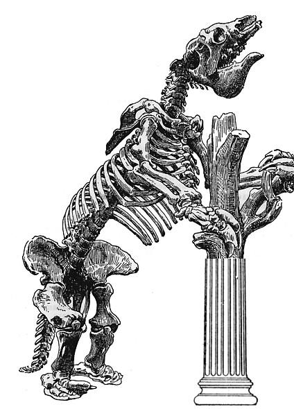 Esqueleto animado. Casta política española, siglo XXI. Fuera de lugar. Amador Fernández-Savater