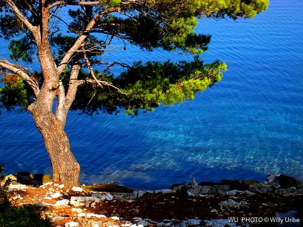 Bahía de Telascica. Dugi Otok. Dalmatia. Croatia. WU PHOTO © Willy Uribe