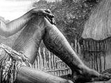 Tatuajes polinesios. Tengo Sitio Libre. Blog de Willy Uribe.