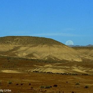 Desierto de Atacama. Chile. WU PHOTO © Willy Uribe Archivo fotográfico Reportajes