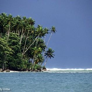 Costa de la isla de Nias. Indonesia. WU PHOTO © Willy Uribe