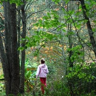 Niña y bosque. Parque Natural de Aia Pagoeta. Gipuzkoa. WU PHOTO © Willy Uribe Archivo Fotográfico Reportajes