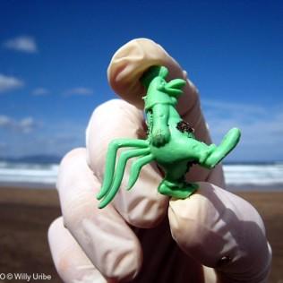 El Gallo Claudio. Basura. Playa Salvaje. Uribe Kosta. Basque Country. WU PHOTO © Willy Uribe Archivo fotográfico Reportajes