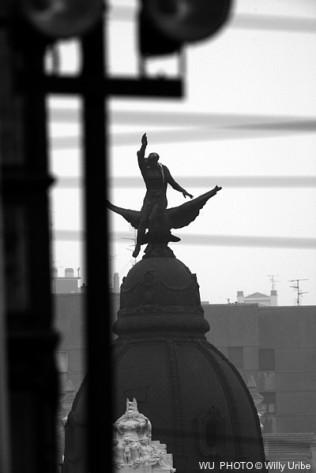 Fenix. Bilbao. Basque Country. WU PHOTO © Willy Uribe Archivo Fotográfico Reportajes