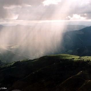 Tomenta sobre Bizkaia. Basque Country. WU PHOTO © Willy Uribe Archivo fotográfico Reportajes