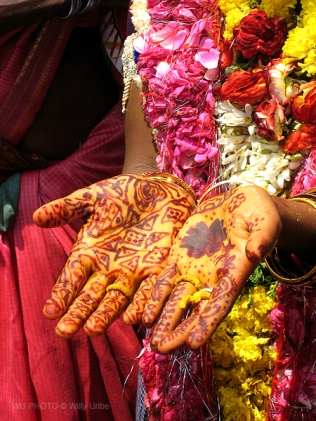 Henna tattoos on the hands of a Hindu bride. WU PHOTO © Willy Uribe