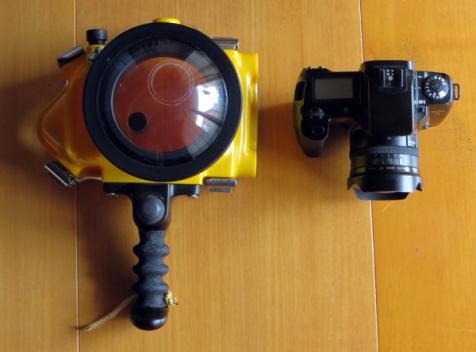 Carcasa para fotografía acuática