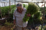 Justcia social. Lucha de clases. José Mujica. Discurso en UNASUR