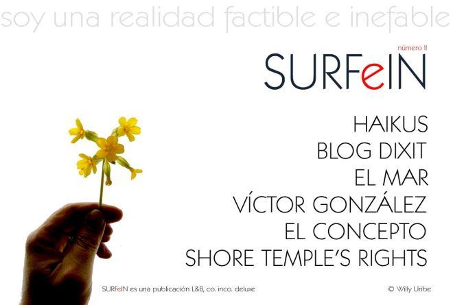 001 surfeinII