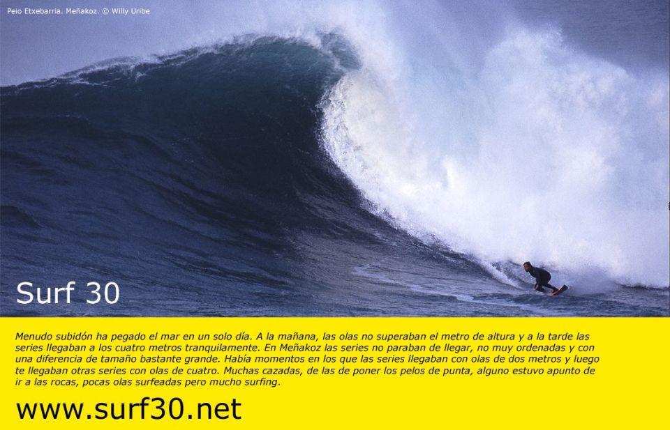 011 surfeinII