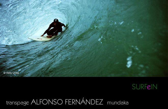 031 surfeinII