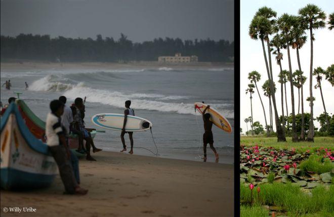 056 surfeinII