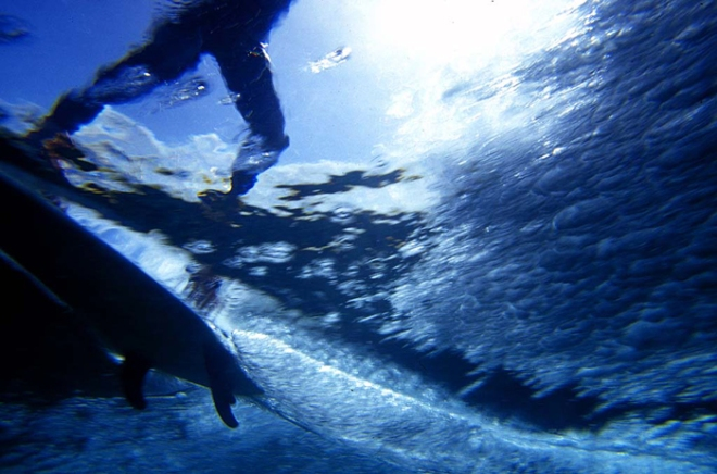 Trilogía del surf. Willy Urtibe